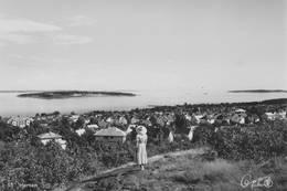 Tidligere utsyn fra Braarudåsen mot Bastøya -  Foto: Arkivbilde