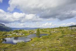 Nydelige små pytter oppe på fjellet. - Foto: Kjell Fredriksen
