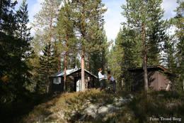 ubetjent hytte, Elverum Finnskog, Finnskogen Turistforening - Foto: Trond Berg