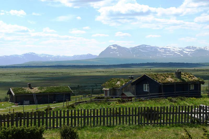 Typisk terreng på Stølsvidda mellom Hallingdal og Valdres