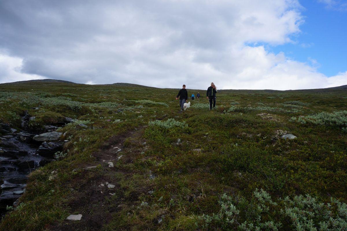Turen til Sissihøa passer folk i alle aldre.