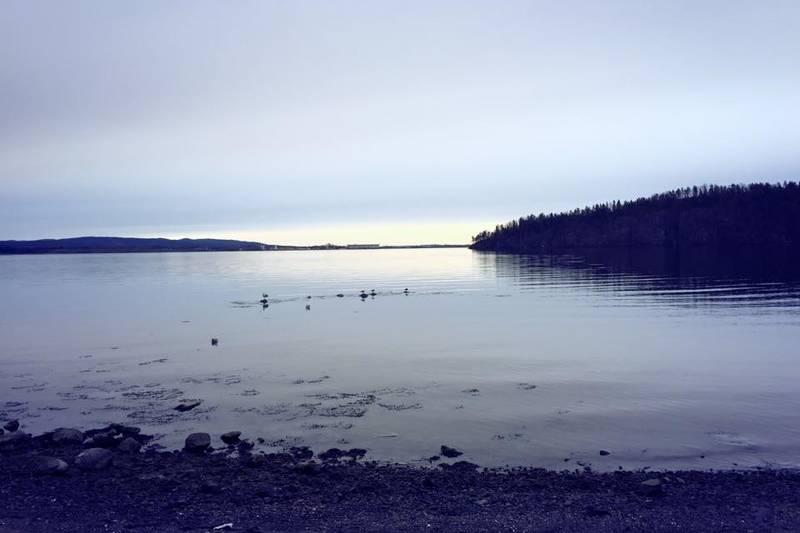 Stien mot Mulvika med utsikt mot Langøya og Mulodden