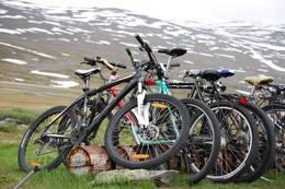 Sykler kan leies. - Foto: Mari Kolbjørnsrud