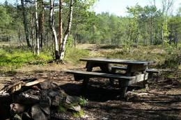 Rasteplass i nordenden av Tomåsan -  Foto: Sigurd Parmann