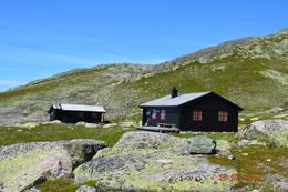 Flott sommerdag på Tjørnbrotbu -  Foto: Ola Belland