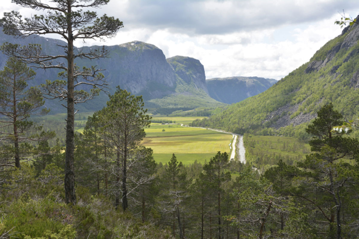Utsikt mot Vinddalen