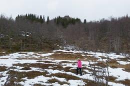 Du er kommet inn på Kirkestien og toppen ligger oovenfor midten i bildet, omtalte granfelt ser du i bildet. - Foto: Kjell Fredriksen
