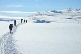 På ski i Skarveheimen -  Foto: Hallgrim Rogn