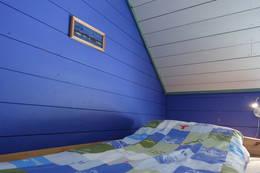 Stjernesildre- det blå rommet - Foto: Marit Wøllo
