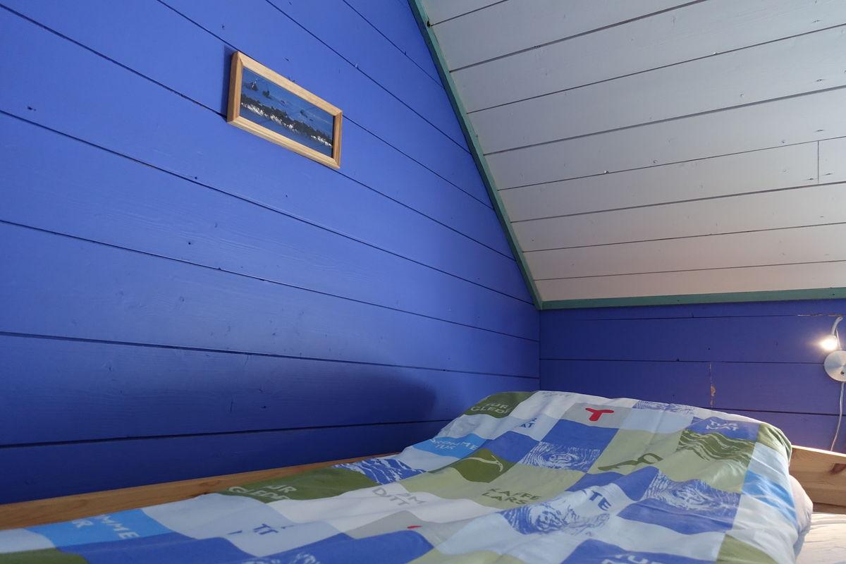 Stjernesildre- det blå rommet