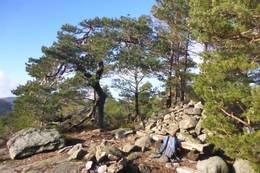 Varen, 190 moh. med postkassa. - Foto: Øyvind Brennsæter