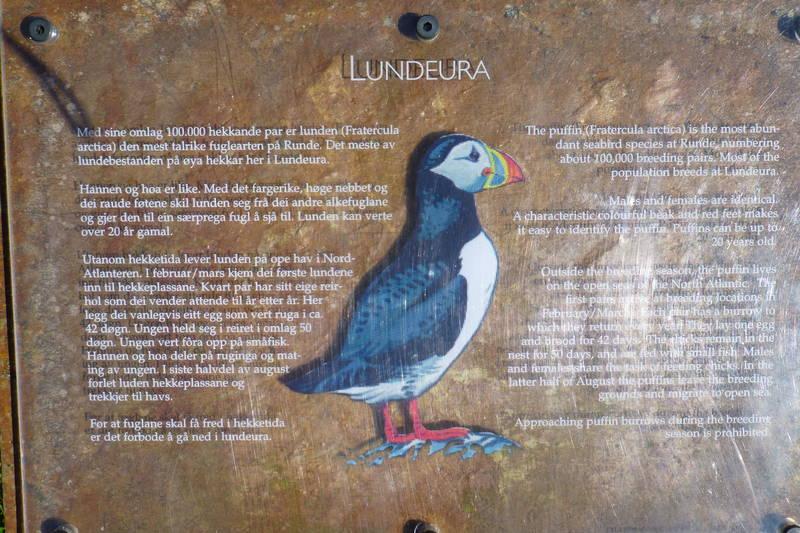 Lundeura