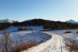 Forrhågen og veien ned til hyttefeltet. - Foto: Kjell Fredriksen