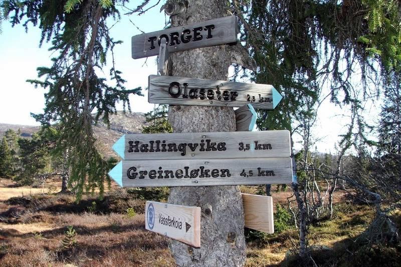 Torget mellom Sørbølfjellet og Veslefjellet