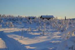 Vestfjellhytta fra skiløypa fra nord - Foto: