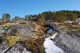 Her kommer du ned til Hestneset - Foto: Kjell Fredriksen