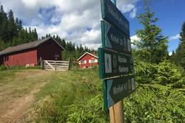Vikkelihytta ligger fint til ved stiene til Marifjell og Klofjell. -  Foto: Hege V. Marthinussen