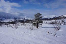 En lett fin tur i vakre Storlidalen.. -  Foto: Oddveig Torve