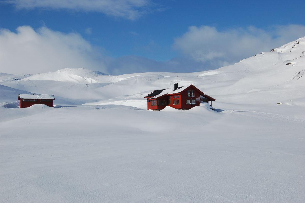 Flott skiterreng rundt hytta