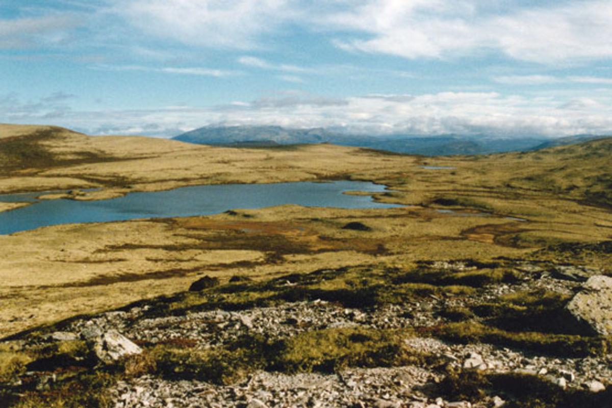 Kjemsjøen