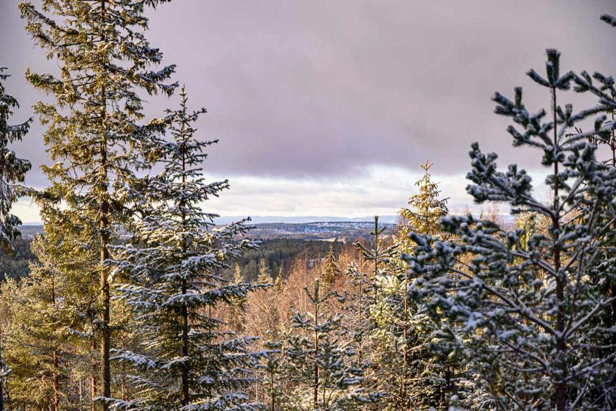 Utsikt fra Lundbergåsen