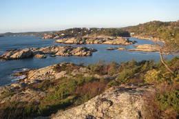 Utsikt fra Kikkerheia mot friområdene i Paradisbukta. - Foto: Floke Bredland