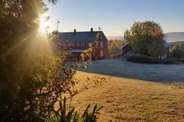 08.00 en høstmorgen 2016 - Foto: Jesper Jørgensen