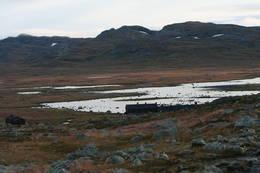 Første synet av Sandhaug - Foto: Ole Jørgen Østby