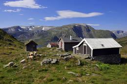 Stølsgrenden på Vatnane med Einebærfjellet bak -  Foto: Svein Ulvund