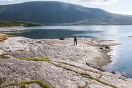 Ute på denne odden står klippetanga for 2017 - Foto: Kjell Fredriksen