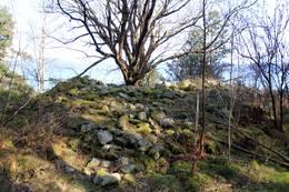 Bronsealdergrava på Tonganeset -  Foto: Lars Kr Gjerde