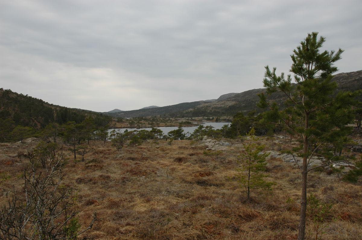 Utsikt til Sørmelansvatnet fra grill-plassen