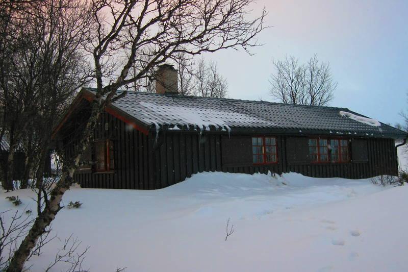 Skriurusten, mars 2011