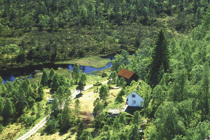 Træet gård, Barnas hytte, Osterøy i Vaksdal kommune utenfor Bergen. Har ca 20 sengeplasser og innredet løe for aktiviteter. Båt og kano, mange turmuligheter. Brukes av Bergen Turlag og leies til arrangementer og grupper. Låst, ubetjent.