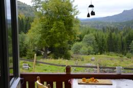 fra verandaen - Foto: