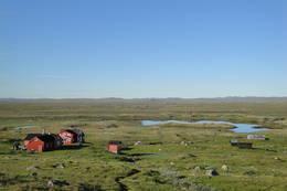 Stigstuv, Hardangervidda  - Foto: Maria Bisgaard