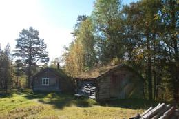 Høstsol ved hytta -  Foto: Helge Lyngmoe