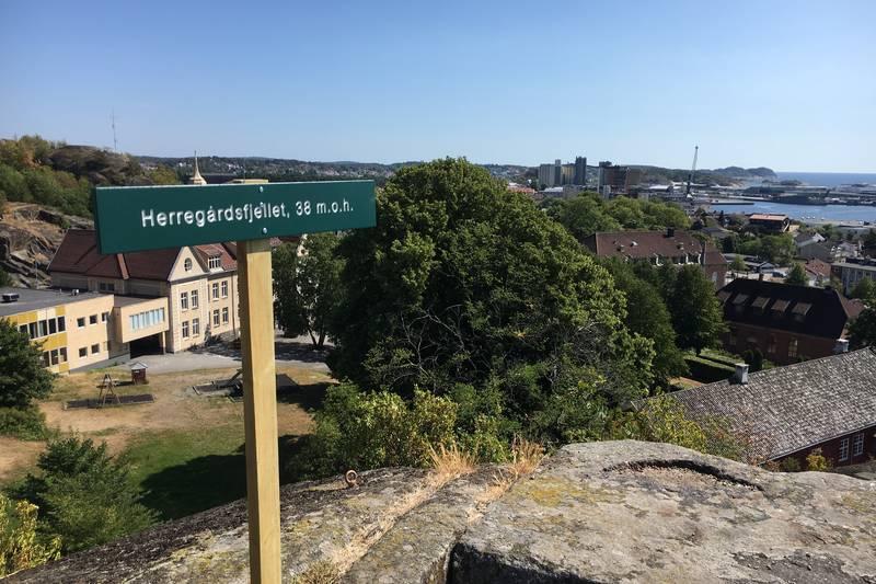 Utsikt over Herregården og Mesterfjellet
