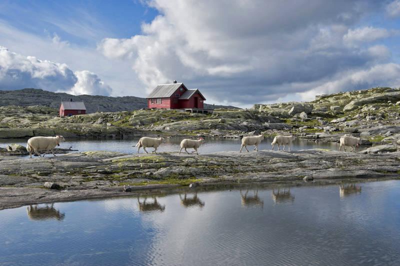 Skavlabu ligger i åpent høyfjell.