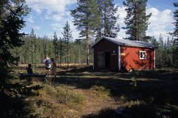 Fra tjern og skog til vidde og fjell - Hedmarksvidda er et snilt område med turmuligheter for alle - Foto: Per Roger Lauritzen