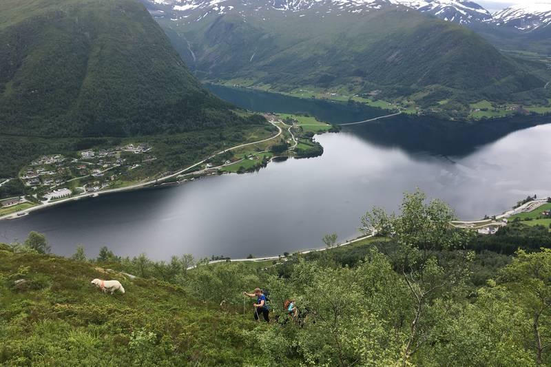 Utsikt mot Skei