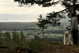 Utsikt mot Tyrifjorden fra platået Koboltkoia ligger på - Foto: Pål Malm
