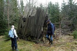 Bjerkebråten -  Foto: Trygve Gulliksen