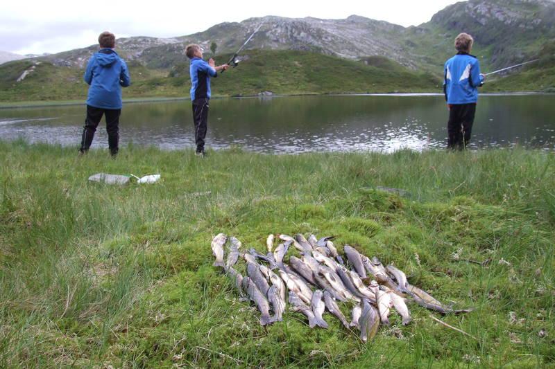 Mye fisk i Bergsdalen