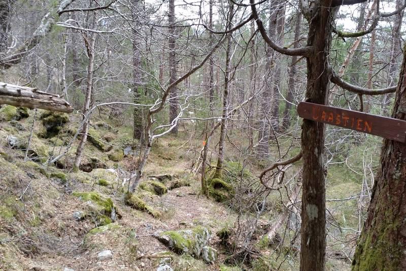 Urastien startar her i stidelet mot Ytrestølen/Ytre Knappstadsøl