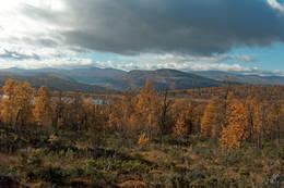 Utsikt fra Allmannstua - Foto: Ukjent