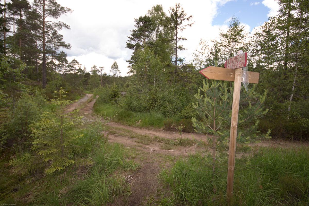 Turen går for det meste på stier, men også litt på flott skogsvei. Flere bilder på Turer i Halden og Omegn på Facebook
