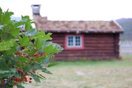 - Foto: Mari Kolbjørnsrud