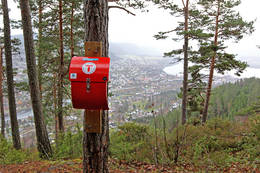 Storeskar. -  Foto: Ottar Kaasa
