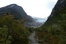 Bødalsbreen - Foto: Bodil Dybevoll
